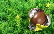 复活蛋 复活节巧克力彩蛋图片 复活节壁纸 彩蛋与装饰 节日壁纸