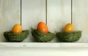 复活蛋 复活节彩蛋壁纸 复活节壁纸 彩蛋与装饰 节日壁纸