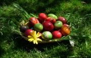 复活节彩蛋 4 1 复活节彩蛋 节日壁纸