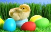 复活节彩蛋 3 20 复活节彩蛋 节日壁纸