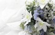 婚礼婚戒鲜花 2 20 婚礼婚戒鲜花 节日壁纸