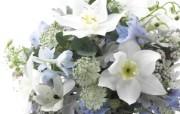 婚礼婚戒鲜花 2 19 婚礼婚戒鲜花 节日壁纸