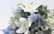 婚礼婚戒鲜花 1 8 婚礼婚戒鲜花 节日壁纸