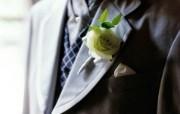 婚礼婚戒鲜花 1 6 婚礼婚戒鲜花 节日壁纸