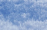 浪漫圣诞之雪景篇 浪漫圣诞之雪景篇 节日壁纸