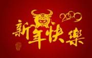 牛气冲天 新年壁纸 牛气冲天 新年壁纸 节日壁纸
