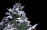 闪烁美丽的圣诞树夜景壁纸 节日壁纸