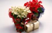 圣诞礼物第二辑壁纸 节日壁纸