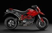 2010 Ducat 静物壁纸