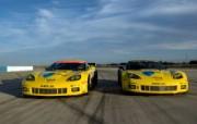Corvette 克尔维特 Racing Sebring 2010 壁纸5 Corvette(克 静物壁纸