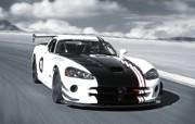 Dodge Viper 道奇蝰蛇 SRT10 ACR X 2010 壁纸3 Dodge Vipe 静物壁纸