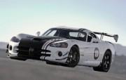 Dodge Viper 道奇蝰蛇 SRT10 ACR X 2010 壁纸5 Dodge Vipe 静物壁纸