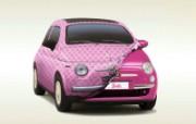 菲亚特Fiat 50 静物壁纸