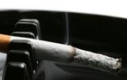 静物写真香烟 静物壁纸