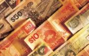 金融系列钞票专辑2 静物壁纸