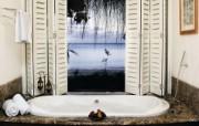 浴室写真 静物壁纸