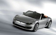 Volkswagen Bluesport Roadster 2010 大众跑车 壁纸3 Volkswagen 静物壁纸