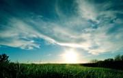 草地夕阳 精选壁纸