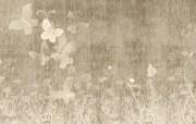 高清壁纸1920x1200 高清壁纸1920x1200 精选壁纸