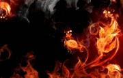 火焰之花(多分辨率) 精选壁纸