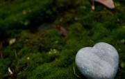 绿草上的心形石头(多 精选壁纸