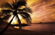 夕阳海湾 壁纸142560x1600 夕阳海湾 精选壁纸