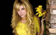 Ashley Tisdale 明星壁纸