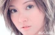港台女星Elle Choi 小雪壁纸 明星壁纸