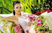 杨丽萍 明星壁纸
