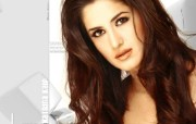印度小姐 3 1 印度小姐 女性壁纸