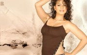 印度小姐 6 20 印度小姐 女性壁纸