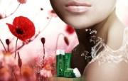 化妆品广告 6 8 化妆品广告 品牌壁纸