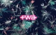 宽屏FWA 5 11 宽屏FWA 品牌壁纸