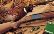 雷明顿枪械 1 15 雷明顿枪械 品牌壁纸