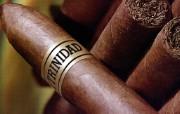 雪茄 1 17 雪茄 品牌壁纸