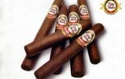雪茄 1 6 雪茄 品牌壁纸