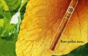 雪茄 1 1 雪茄 品牌壁纸