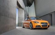 Audi 奥迪 TTS Coupe 2011 壁纸4 Audi奥迪 T 汽车壁纸
