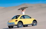 经典再现!新甲壳虫系列壁纸 汽车壁纸