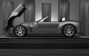 Shelby Cobra Concept 福特眼镜蛇 壁纸1 Shelby Cob 汽车壁纸