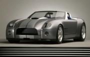 Shelby Cobra Concept 福特眼镜蛇 壁纸6 Shelby Cob 汽车壁纸