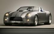 Shelby Cobra Concept 福特眼镜蛇 壁纸7 Shelby Cob 汽车壁纸
