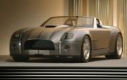 Shelby Cobra Concept 福特眼镜蛇 壁纸8 Shelby Cob 汽车壁纸