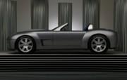 Shelby Cobra Concept 福特眼镜蛇 壁纸29 Shelby Cob 汽车壁纸