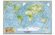 超大世界地图 其他壁纸
