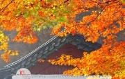 YAHOO韩国十月风景月历 YAHOO韩国十月风景月历 其他壁纸