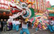 东西文化交融的动感都市 香港特色旅游壁纸 舞龙表演令节日庆典锦上添花 桌面壁纸 东西文化交融的动感都市香港特色旅游壁纸 人文壁纸