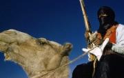 透过镜头 Tuareg Cavalryman Algeria 图阿雷格骑兵桌面壁纸 国家地理杂志2008年度最佳图片 人文壁纸