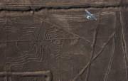 游历大千世界 desert designs peru 秘鲁 纳斯卡巨画图片壁纸 国家地理杂志每日一图2010三月摄影壁纸 人文壁纸