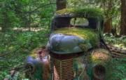 游历大千世界 国家地理杂志每日一图2010四月摄影壁纸 森林中的废弃卡车图片壁纸 国家地理杂志每日一图2010四版 人文壁纸